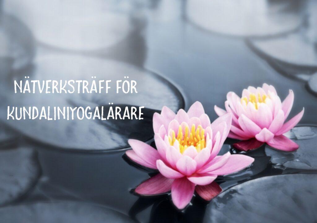 Nätverksträff för kundaliniyogalärare i Värmland